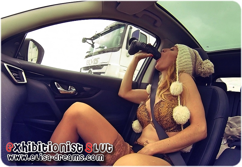 Ma Salope suçant un sexe énorme devant des camioneurs